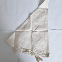 10L Filter bag